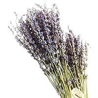 Ramo de flores secas de lavanda natural de Povkeever, 400 tallos, decoración para bodas y decoración del hogar