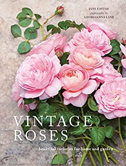 Vintage Roses: Beautiful varieties for home and garden (Beautiful Varieties/Home/Gardn) by [Jane Eastoe]