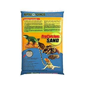 What Is The Best Substrate For A Leopard Gecko?