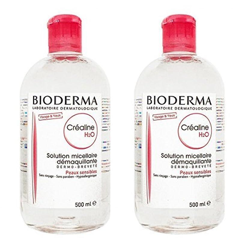 封建解任気絶させるビオデルマ(BIODERMA) サンシビオ H2O (エイチ ツーオー) D 500ml 2本セット[並行輸入品]