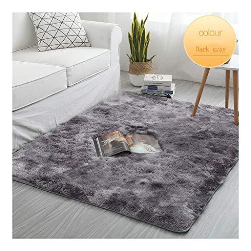 Soft Shaggy karpetten Fluffy tapijt in de woonkamer Slaapkamer Deken van het Bont Anti-Skid Kind Spelen Mat Decor van het Huis Deurmat Buiten Extra Duurzaam (Color : C, Size : 200 * 250cm)