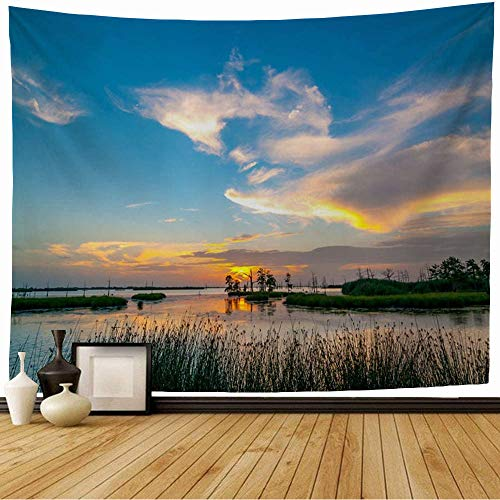 Starosac Tapestry Wall Hanging Lake Grass South Sunset Yellow Orange Blues Louisiana Swamp White Blue Nature Parks Outdoor Summer Wall Tapestry for Living Room Dorm 80x60 Inch