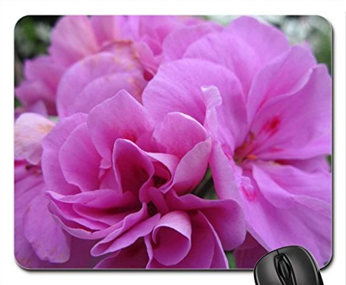 Bloemen tuin in kas 44 Mouse Pad, Mousepad (Vlowers Mouse Pad)