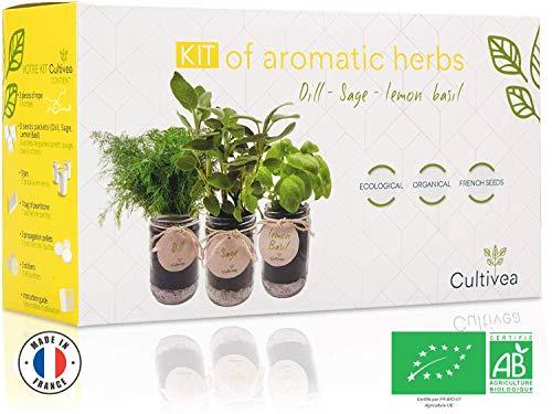 Cultivea – Kit Prêt à Pousser d'Herbes Aromatiques – Graines Françaises 100% Écologiques et Bio – Jardin potager d'intérieur – Plante (Aneth, Sauge, Basilic Citron) - Idée Cadeau -