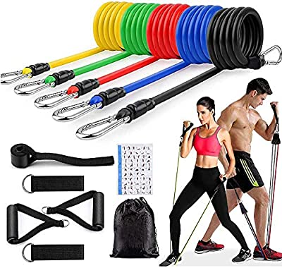 Resistance Band Set,5 Resistance Bands with Handles, with Door Anchors, Ankle Strap Elastic Bands for Exercise,Stackable100 Pounds of Strength Training Equipment, Resistance Training, Physical Therapy