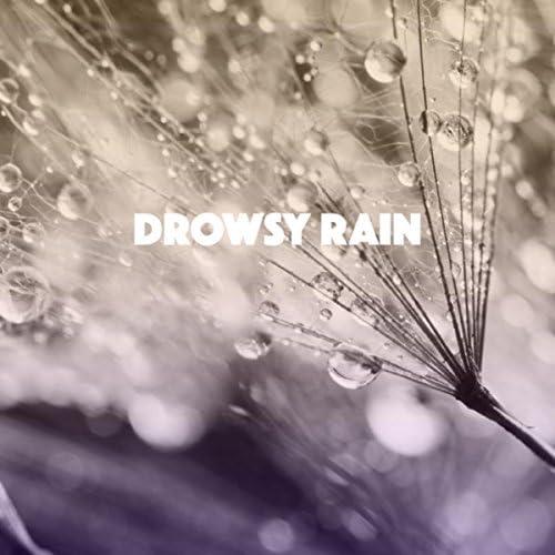 Rain Sounds & White Noise, Meditation Rain Sounds & Rain