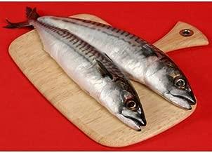 Saba (Norwegian Mackerel) Mackerel - 600-800g - Frozen - 22 Lb Case
