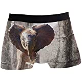 Hombres Boxer Briefs Retro Elephant Animal Underwear For Boy Youth Hombres Poliéster Spandex Transpirable