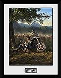 1art1 Days Gone - Key Art Póster De Colección Enmarcado (40 x 30cm)