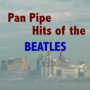 Pan Pipe Hits Of The Beatles