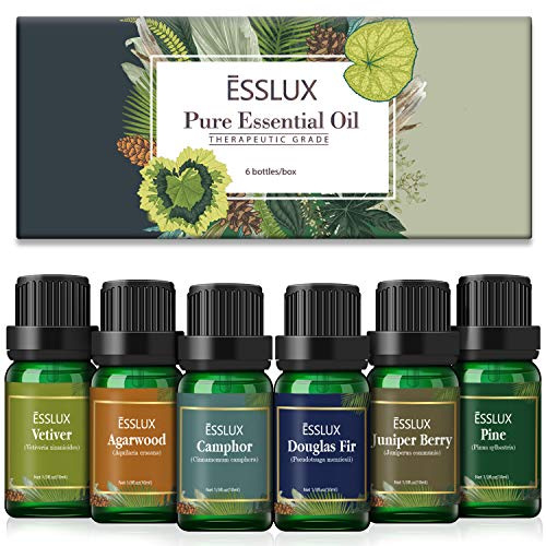 Woody Essential Oils Esslux Premium Aromatherapy Gift Set with Pine Camphor Vetiver Agarwood Juniper Berry Douglas Fir Essential Oils for Diffuser Massage Winter Home Fragrance Candles Making