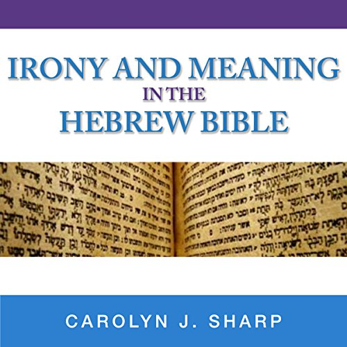 Irony and Meaning in the Hebrew Bible audiobook cover art