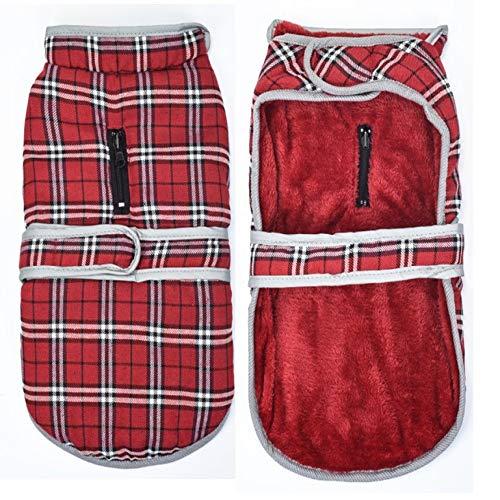 HCBDQQ Hund Warme Jacke Jacke wasserdichte Kleidung MittelgroßE Haustier Hund Katze Kleidung Xs