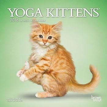 Calendar Yoga Kittens 2016 Mini 7x7 (Multilingual Edition) Book