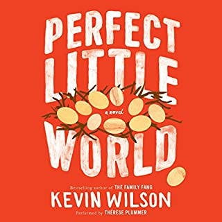 Perfect Little World audiobook cover art