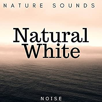 Natural White: Noise and Nature Sounds for Deep Sleep and Massage