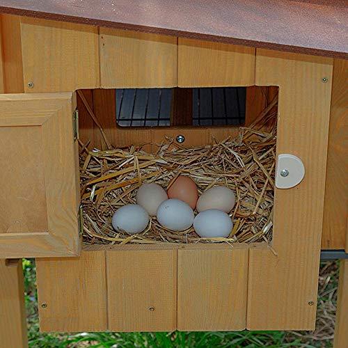Ferplast 57096000 Hühnerstall HEN HOUSE 30, für bis zu 6 Hennen, Holzkonstruktion, Maße: 162 x 100 x 110 cm - 5
