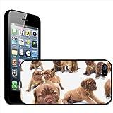 Fancy A Snuggle Coque Rigide pour Apple iPhone 5 Motif Chiots Bullmastiff