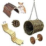 Ewolee Jouets à mâcher de Hamster, Lot de 5 Jouets pour perroquets ou...