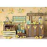 Fondo de fotografía de Fruta de limón Fiesta de cumpleaños telón de Fondo de bebé recién Nacido Photophone photocall Photo Studio-270x180cm