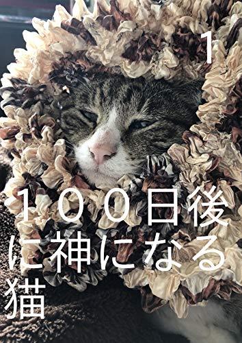 100日後に神になる猫 100日後に神になる猫