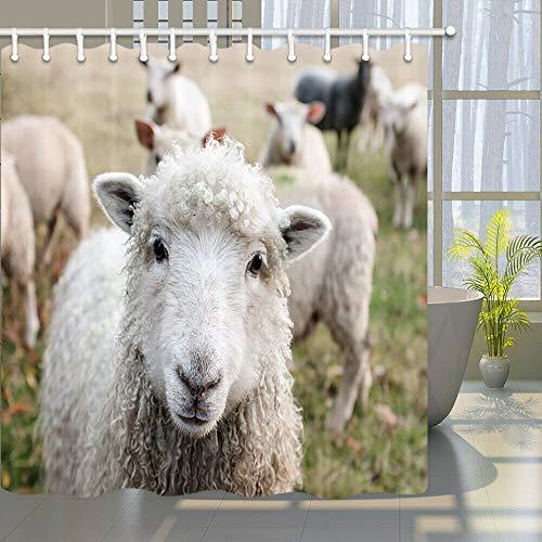 Nutztier Schafe Hochwertiger, abriebfester, wasserdichter, schnell trocknender Duschvorhang für das Badezimmer