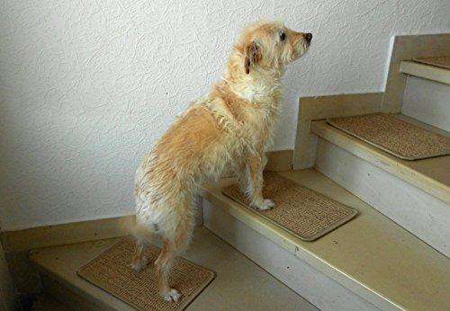 BELLOsteps® Stufenmatten für große Hunde ohne Kleber, 13er Set Sisal Natur
