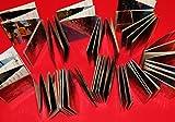 48 pezzi - 4 quadri - fisarmonica / leporello con 12 astucci trasparenti in serie - per cartoline normali / foto 10,5x5,5 cm - 4x6 pollici