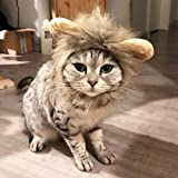 zifeifei cat halloween costumes cat in the hat costumecats protective collarCat Wig Hood Transformed Outfit...