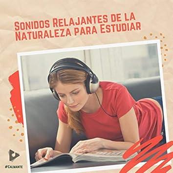 Sonidos Relajantes de la Naturaleza para Estudiar