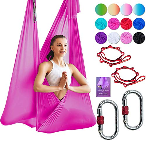 DASKING Deluxe 5m/Set Yoga Swing Aerial Yoga Hammock kit with Daisy Chains O-Ring, Fabric & Guide (White-1)