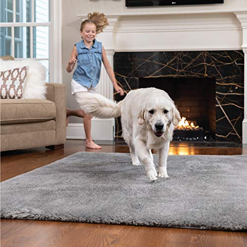 Gorilla Grip Original Faux-Chinchilla Area Rug, 6x9 FT, Many Colors, Soft Cozy Pile Washable Kids Carpet, Rugs for Floor, Luxury Shag Carpets for Home, Nursery, Bed and Living Room, Dark Gray