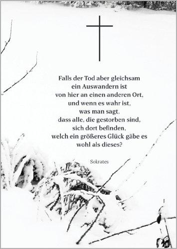Helga Bühler 5X Spenden Sie Trost mit Dieser Trauerkarte und einem Sokrates Zitat • Beileids Karten Set im Trauerfall zum Kondolieren im Sterbefall, nach Beerdigung