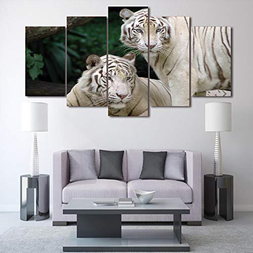 HUA JIE Auf Für Büro Bilder Hd Gedruckt White Tiger Landscape Group Malerei Raumdekor Drucken Poster Bild Leinwand 031