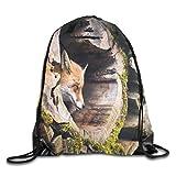 Ejjheadband Animal Duvet Cover Set, True Fox Vulpes Inside Wood Log Holes Exotic Furry Creature Wildlife Nature Animal Design,Tan_2Drawstring Shoulder Backpack
