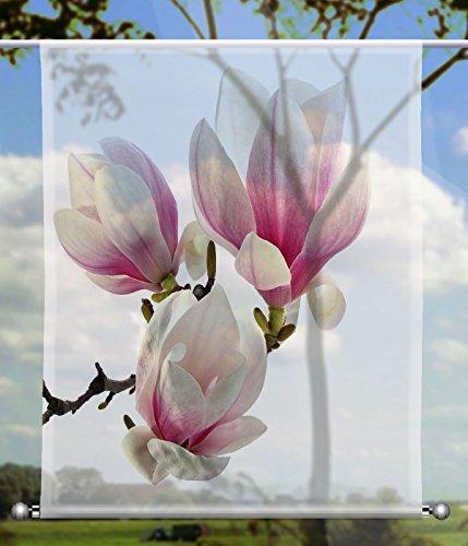 gardinen-for-life Scheibenhänger Magnolie Transparent rechteckig mit Beschwerung, Toller Scheibenhänger aus Feiner Voile, Verschiedenen Größen (HxB 75x60cm)