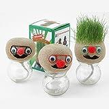 Inovey Mini Diy Magic Grass Plant Pot Head Doll Escritorio Oficina En Maceta...