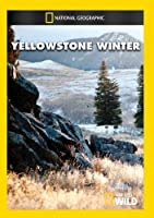 Yellowstone Winter [DVD] [Import]