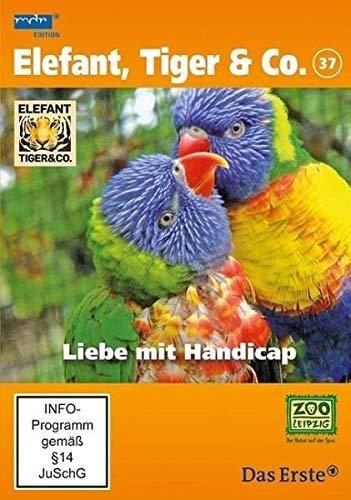 Elefant, Tiger & Co. 37 Liebe mit Handicap/DVD