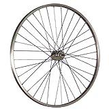 Taylor-Wheels 28 Pulgadas Rueda Trasera Bici con buje con Freno de contrapedal