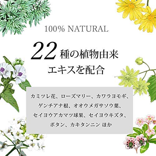 綺和美[KIWABI]RootVanish白髪隠し(ダークブラウン)スティックタイプ女性用[100%天然成分/無添加22種類の植物エキス配合]