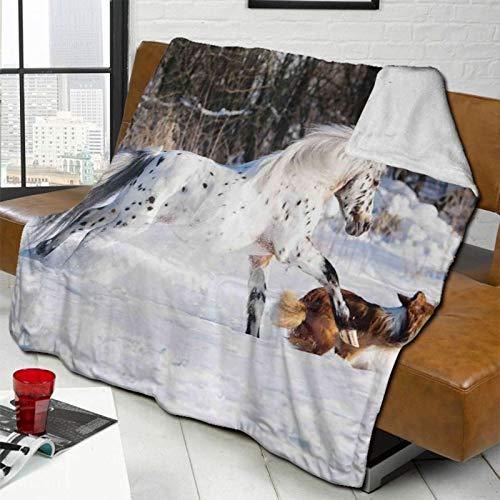 MEUYGOFLZ Appaloosa Pony And Sable Border Collie Runs Manta de forro polar tamaño Sherpa ligera súper suave y acogedora manta de cama de microfibra