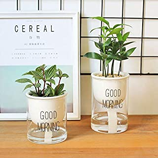 Allegro Huyer Ceramic Planter 1pc Automatic Watering Planter Pot Ceramic Flowerpot with Glass Water Container for Green Plants Succulent Plant Cactus