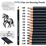 Malayas - Juego de 14 lápices de dibujo 12B 10B 8B 6B 5B 4B 3B 2B B HB 2H 4H 6H lápices de grafito para niños adultos artistas principiantes profesionalesr