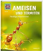 Ameisen und Termiten. Fleissige Baumeister