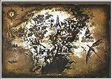 Dark Souls II Authentic Cloth Game Map (16.5' x 11.7')