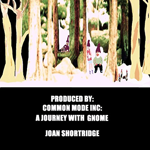 A Journey with Gnome audiobook cover art