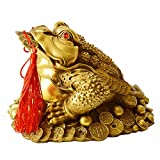 Brass Feng Shui Money Frog (Three Legged Wealth Frog or Money Toad) Statue + Set of 5 Lucky Charm Ancient Coins on Red String,Feng Shui Decor