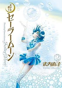 美少女戦士セーラームーン 完全版 2巻 表紙画像