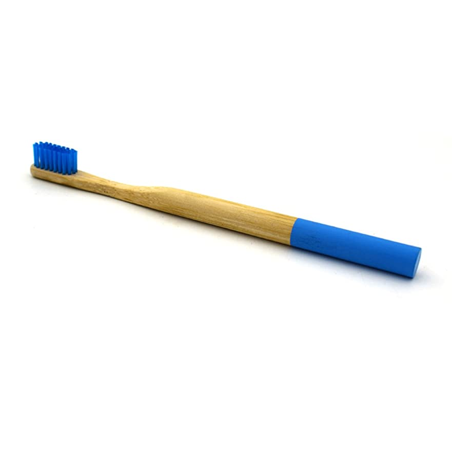 混乱した収束する一目HEALLILY竹製の歯ブラシ天然木炭竹製の歯ブラシ大人用柔らかい剛毛の歯ブラシ(ブルー)